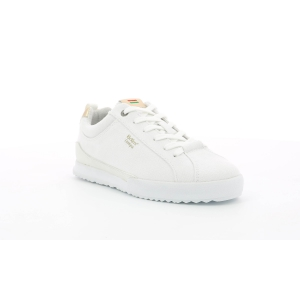 Kickers TAMPA CDT WHITE  L. GOLD